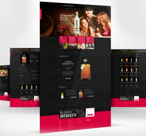 <span>Flox Wines &#038; Spirits Website</span><i>→</i>